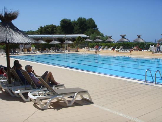 Piscine photo de h tel club marina viva porticcio for Club piscine shawinigan sud