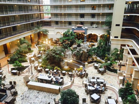 bar picture of embassy suites by hilton fort lauderdale 17th rh tripadvisor com