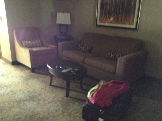 Hilton Garden Inn Toronto / Brampton : Living room area