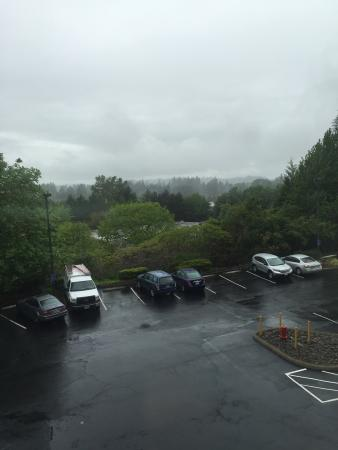 Holiday Inn Express Portland South - Lake Oswego: Looking out from my room, 329