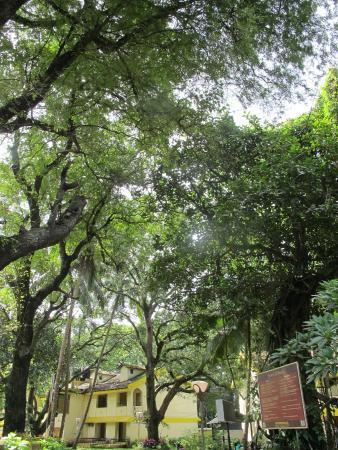 Miramar Residency: Front view