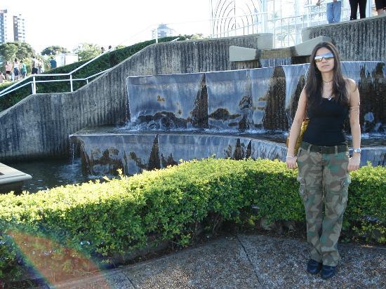 pedras jardim curitiba:passagem de pedras na frente da estufa – クリティバ、Jardim