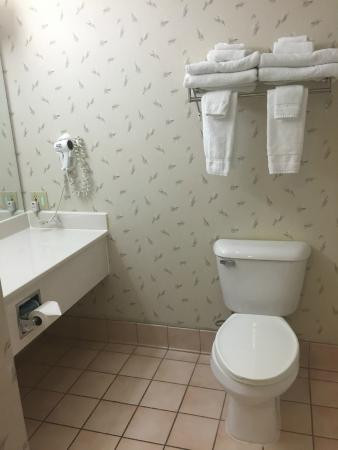 Country Inn By Carlson, Decorah: Bathroom
