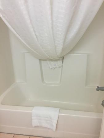 Country Inn By Carlson, Decorah: Bathtub
