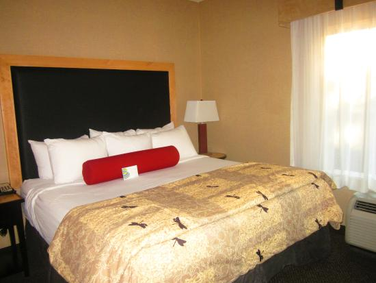 Cambria Hotel Raleigh-Durham Airport: Room 219 - Queen Bed Suite