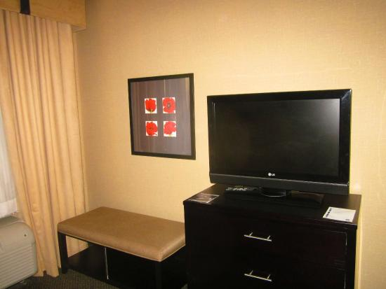 Cambria Hotel Raleigh-Durham Airport: TV in sleeping area