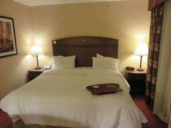 Hampton Inn Tremonton: Comfortable Bed
