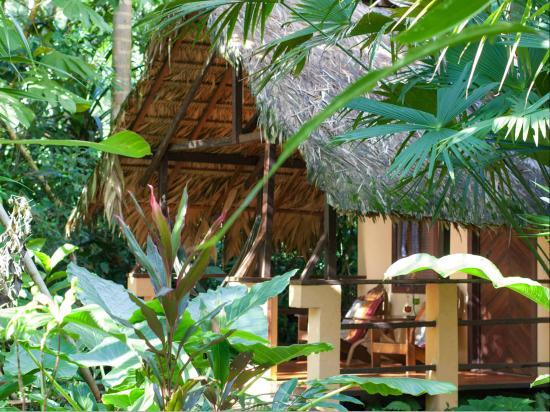 Caribe Town: Honeymoon Bungalow -