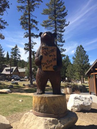 Bear Creek Resort: Been here twice both times have been a wonderful experience and you can even bring your pets :D?