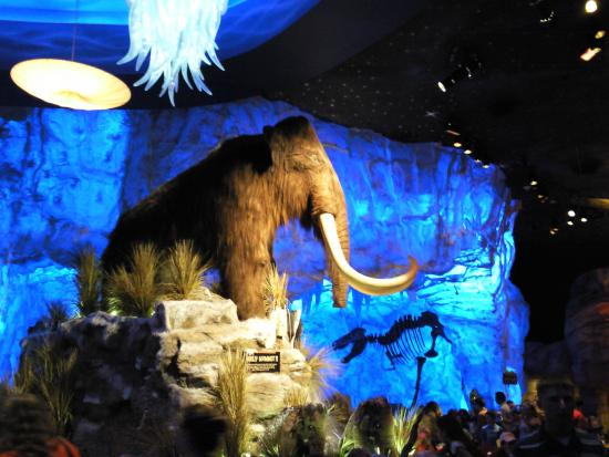 Wooly Mammoth - Picture of T-Rex, Orlando - TripAdvisor