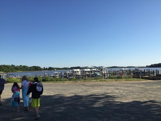 Chestertown, MD : View of the Marina