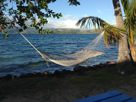 MacDonalds Nananu Beach Cottages: Relaxing Hammock