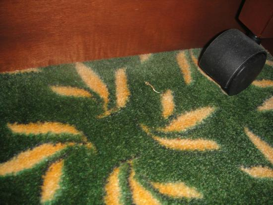 Dirty chair - Picture of Hampton Inn Elkhart, Elkhart - TripAdvisor