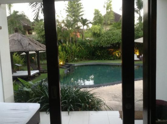 Villa Diana Bali: Pool room