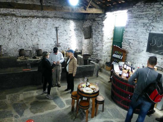 Douro Valley : Sampling wine, olive oil, honey, almonds