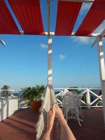 Hostal Mayito: Relaxing roof top terrace