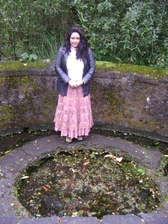 St. Brigid's Well: O poço de Brigid é pequeno e e uma fonte. Dá para pegar água direto da fonte.