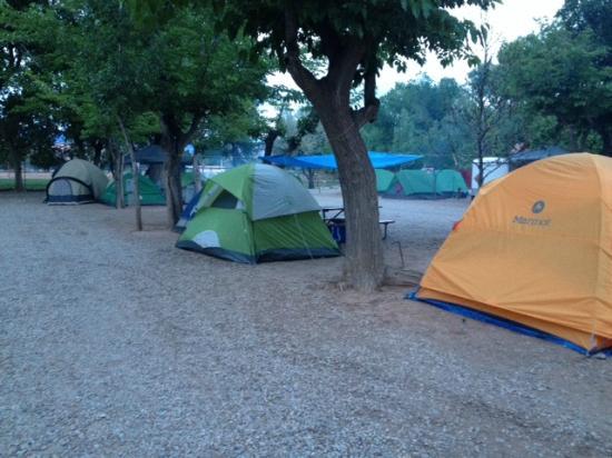 Canyonlands RV Resort & Campground : Tent Site 103 & 104