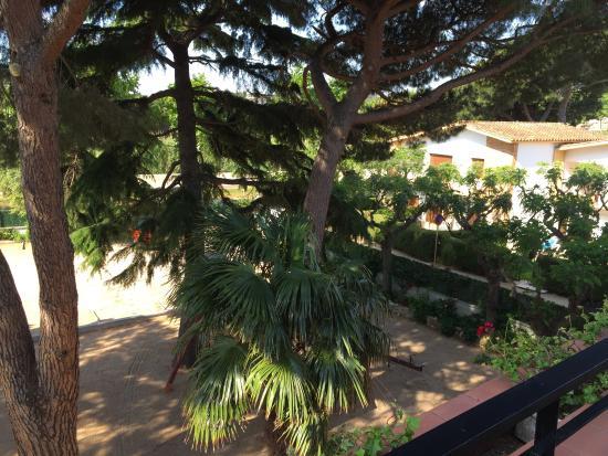 Benelux : Balcon du studio avec la vue sur les pins
