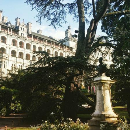 Hotel de France et de Guise : Vue sur le château de Blois