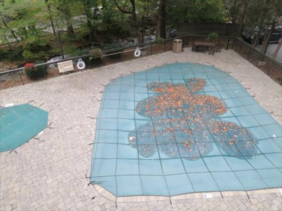 Hampton Inn Gatlinburg : This Hampton was one of the first hotels in Gatlinburg to place a tarp over their pool.