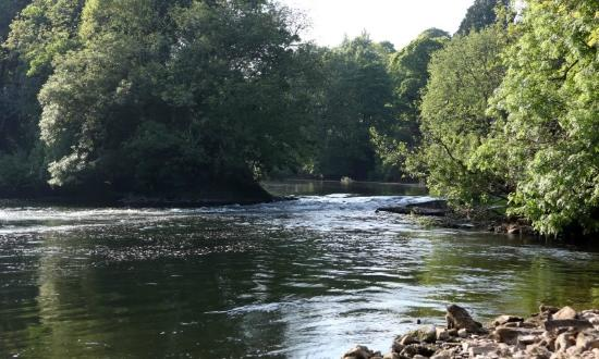 Fortwilliam Fishery: The Weir