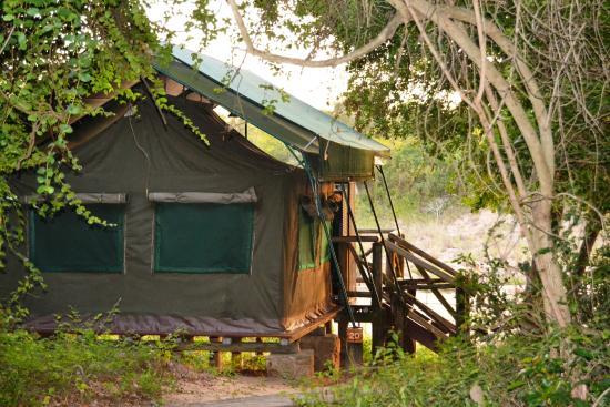 Tamboti Satellite Camp: Tamboti Tented camp