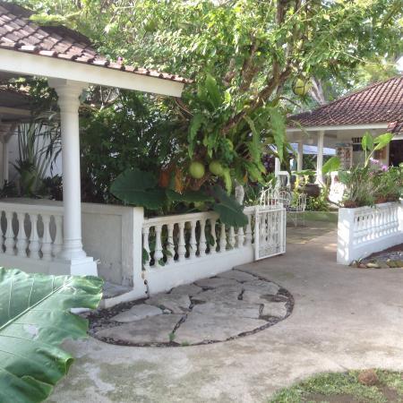 Gardenia Guesthouse: Part of garden area