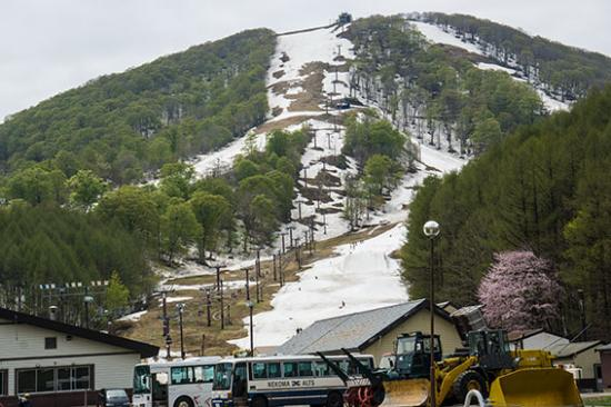Urabandai Nekoma Ski Place: ゲレンデ写真
