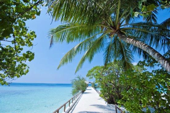 Makunudu Island: Jetty