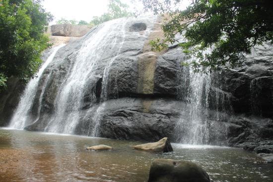"Thommankuthu Falls : Private Falls - ""Wild Water Falls"""