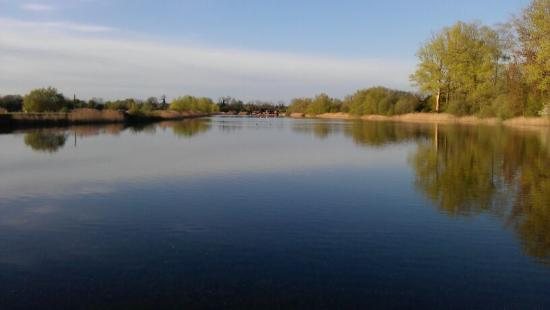 Cotswold Watersports: View of our slalom course
