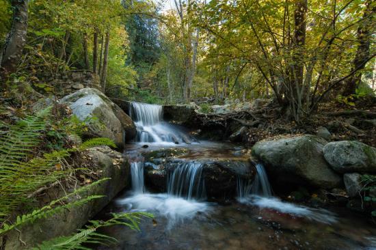 Provincia de Barcelona, España: Parc Natural del Montseny (Costa Barcelona)