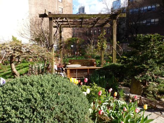 Clinton Community Garden - only 150 yards from the hotel - Picture ...