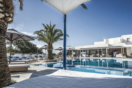 Andronikos Hotel: Pool Area