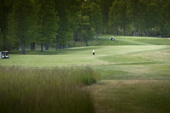 Spruce, MI: Peaceful round; you'll feel like you have the course to yourself