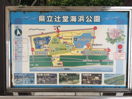 Tsujido Kaihin Park : 案内図