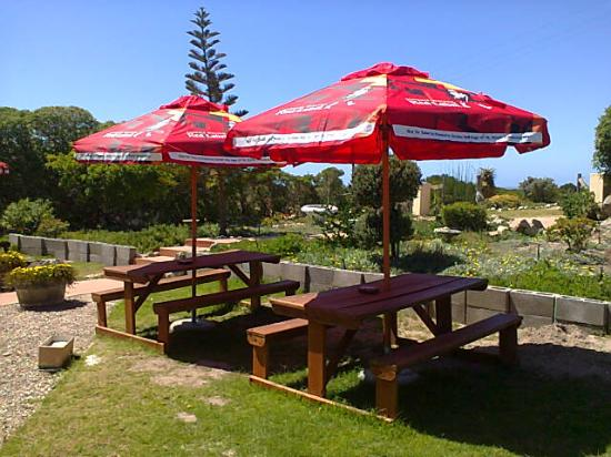 Lighthouse Tavern: Outside tables
