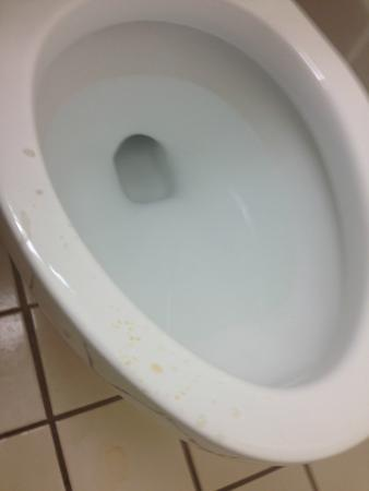 Comfort Inn North: Notice the Toilet Rim!!!