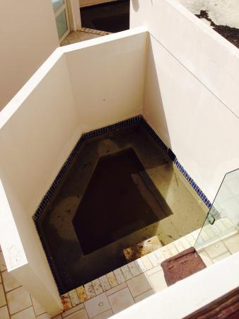 Bilde fra Grand Bahia Ocean View Hotel