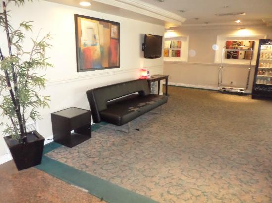 Wondrous Reception Dirty Torn Carpet Ripped Fake Leather Sofa Short Links Chair Design For Home Short Linksinfo