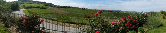 Piedmont Food and Wine - Day Tour: Marchesi di Grésy