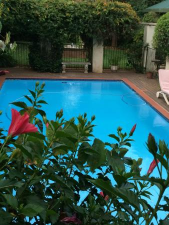 Village Green Guest House: Too chilly for a swim, but a nice pool