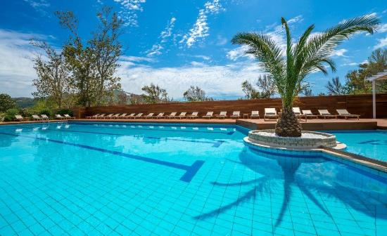 Bitzaro Palace Hotel: Pool view