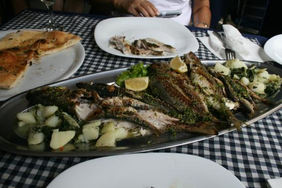 Grilled fish plate at Cafe Barbara