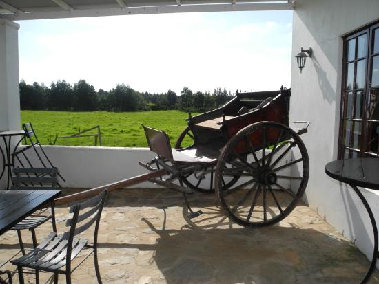 De Wagenhuis Guest House : The pastures from the diningroom verandah.