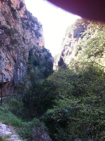 Kalavrita Railway - Odontoto: en route