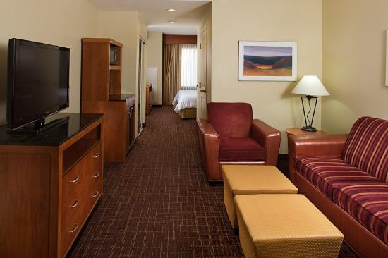 Hilton Garden Inn DFW Airport South: Suite with King Bed and Queen Foldout Sofa
