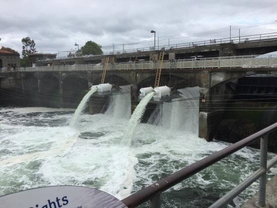 Salmon ladder migration system picture of hiram m for Ballard locks fish ladder