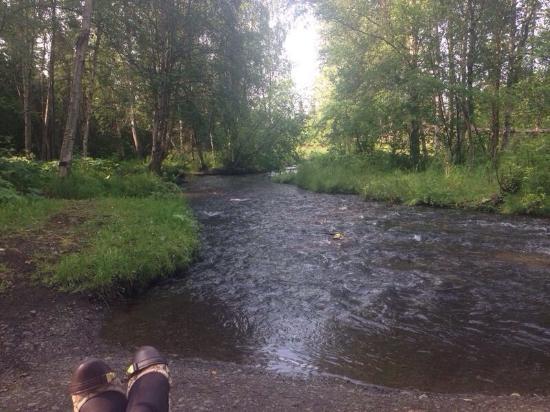 Chester Creek Greenbelt